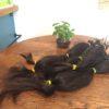 ヘアドネーションでお預かりした髪を送付しました