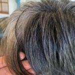 【グレイヘアへの移行・作り方】ヘナを使った白髪染めをやめる!と決めた方のその後